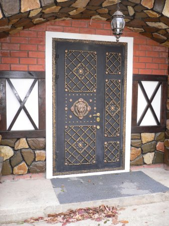 Купить железные двери в Дубне