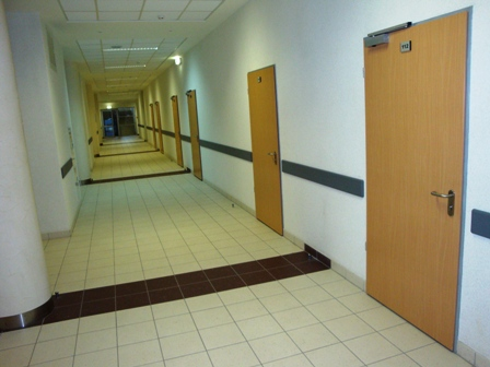 Офисные двери входные и межкомнатные